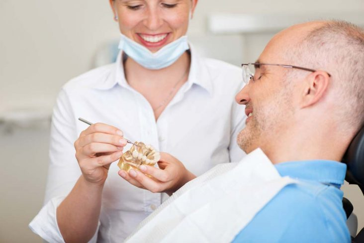 Dentist showing man model of teeth