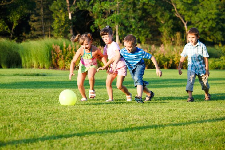 Group of children play football on a lawn during a sunny day